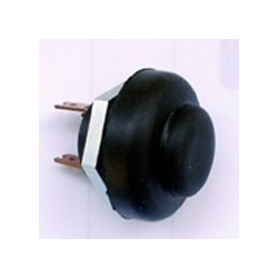 Rotax Max Motor Switch