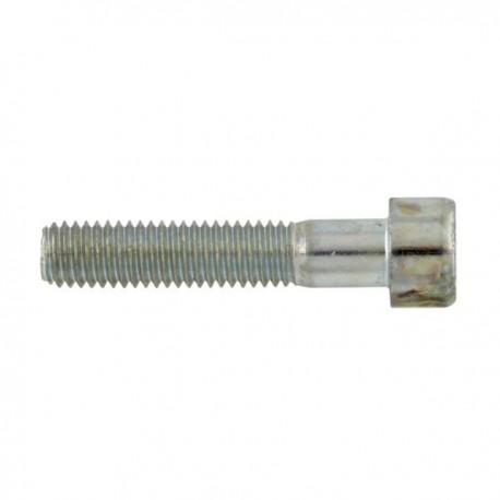 Cilinderschroef binnenzeskant M10